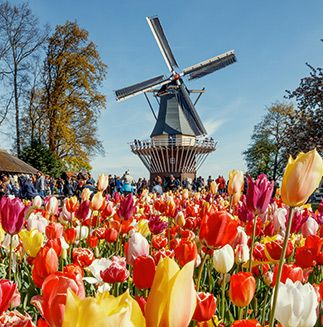 culture-and-more-keukenhof