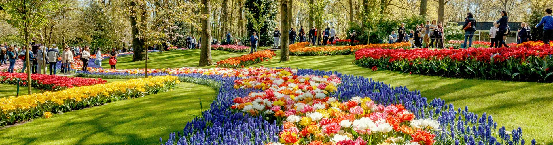 header-exclusive-keukenhof-0
